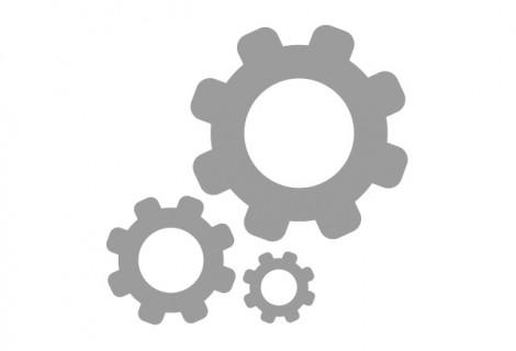 Application Management Services (AMS)